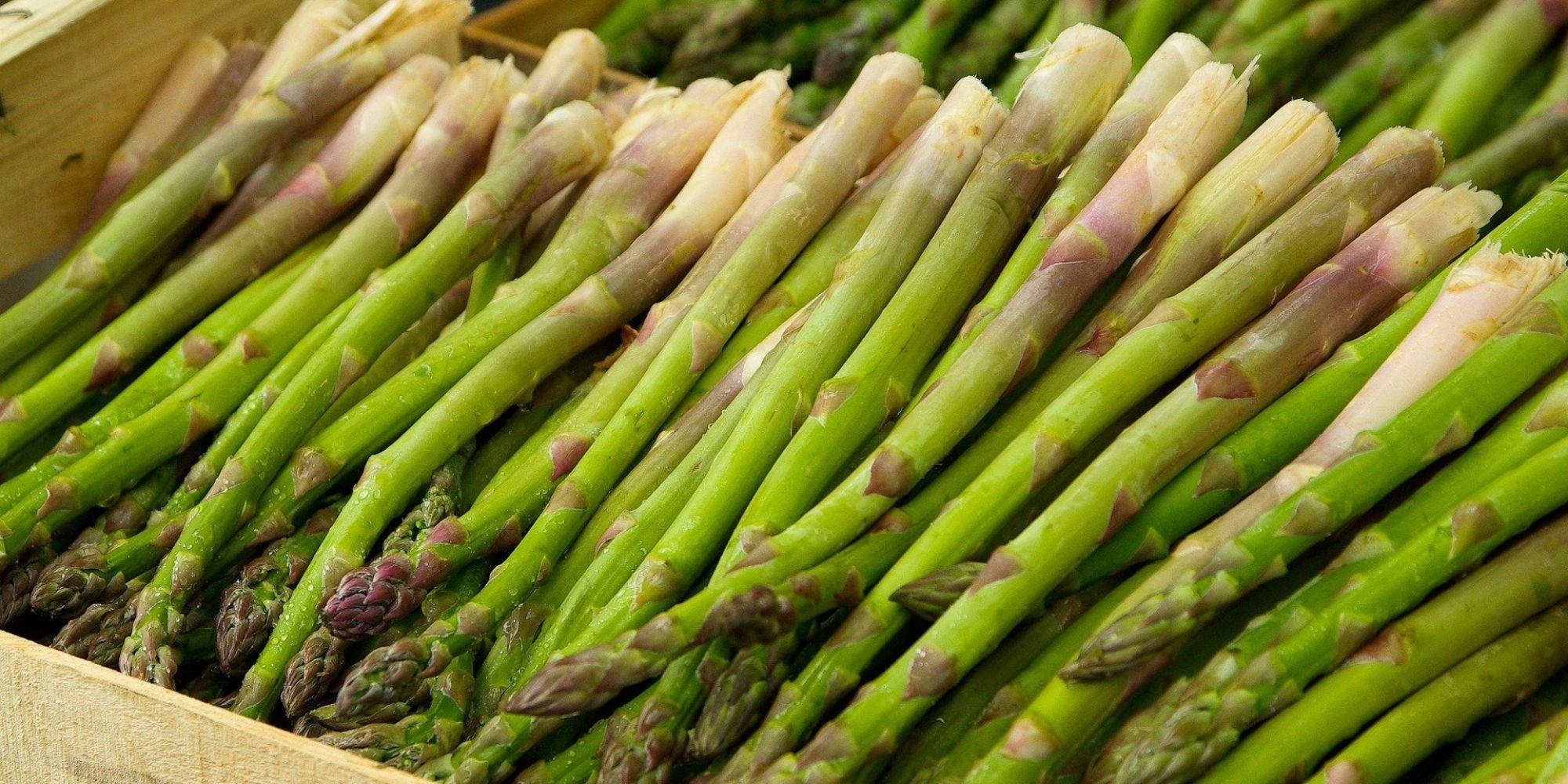 Découvrez les asperges sauce maltaise, une recette de saison