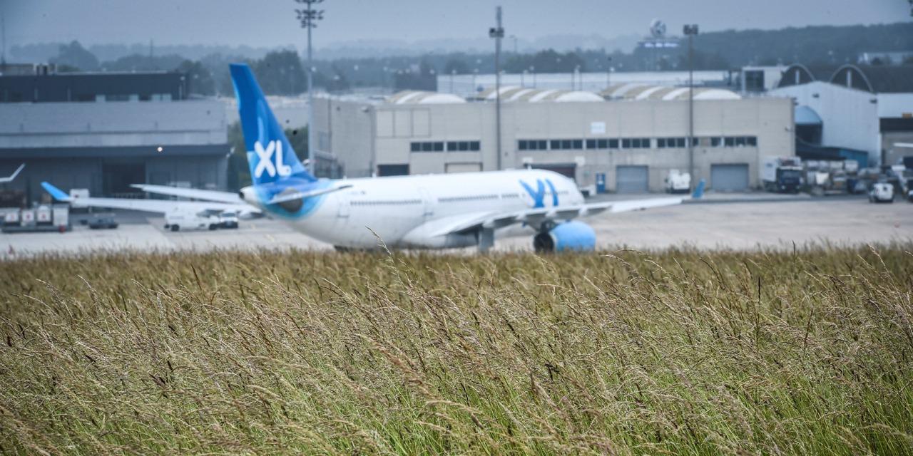 XL Airways en cessation de paiement : son président lance un appel à Emmanuel Macron