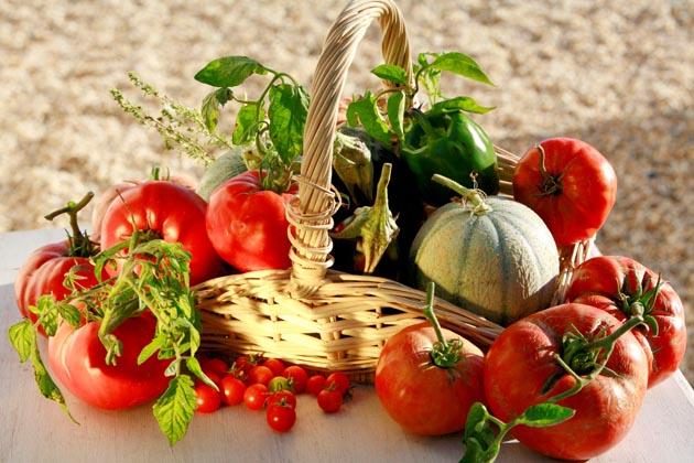 Cultiver son jardin et son potager