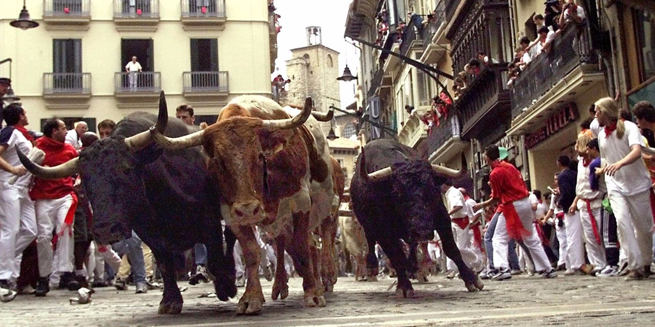 d0fc63ee43a Bouches-du-Rhône   deux femmes blessées lors d un lâcher de taureaux