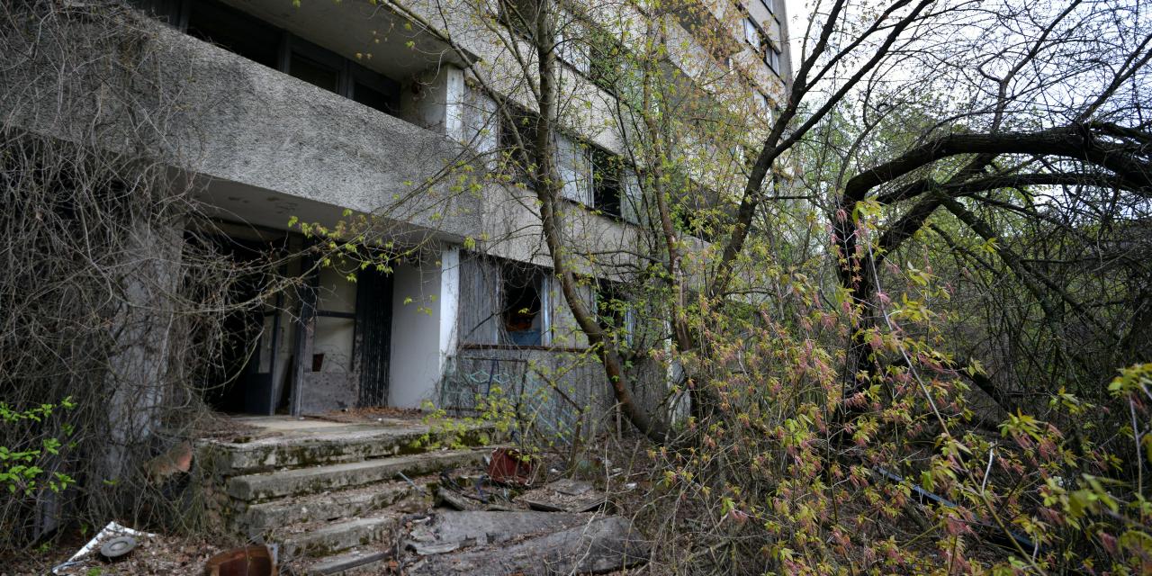 Mothman apparaît avant une catastrophe A-Tchernobyl-la-nature-a-repris-ses-droits