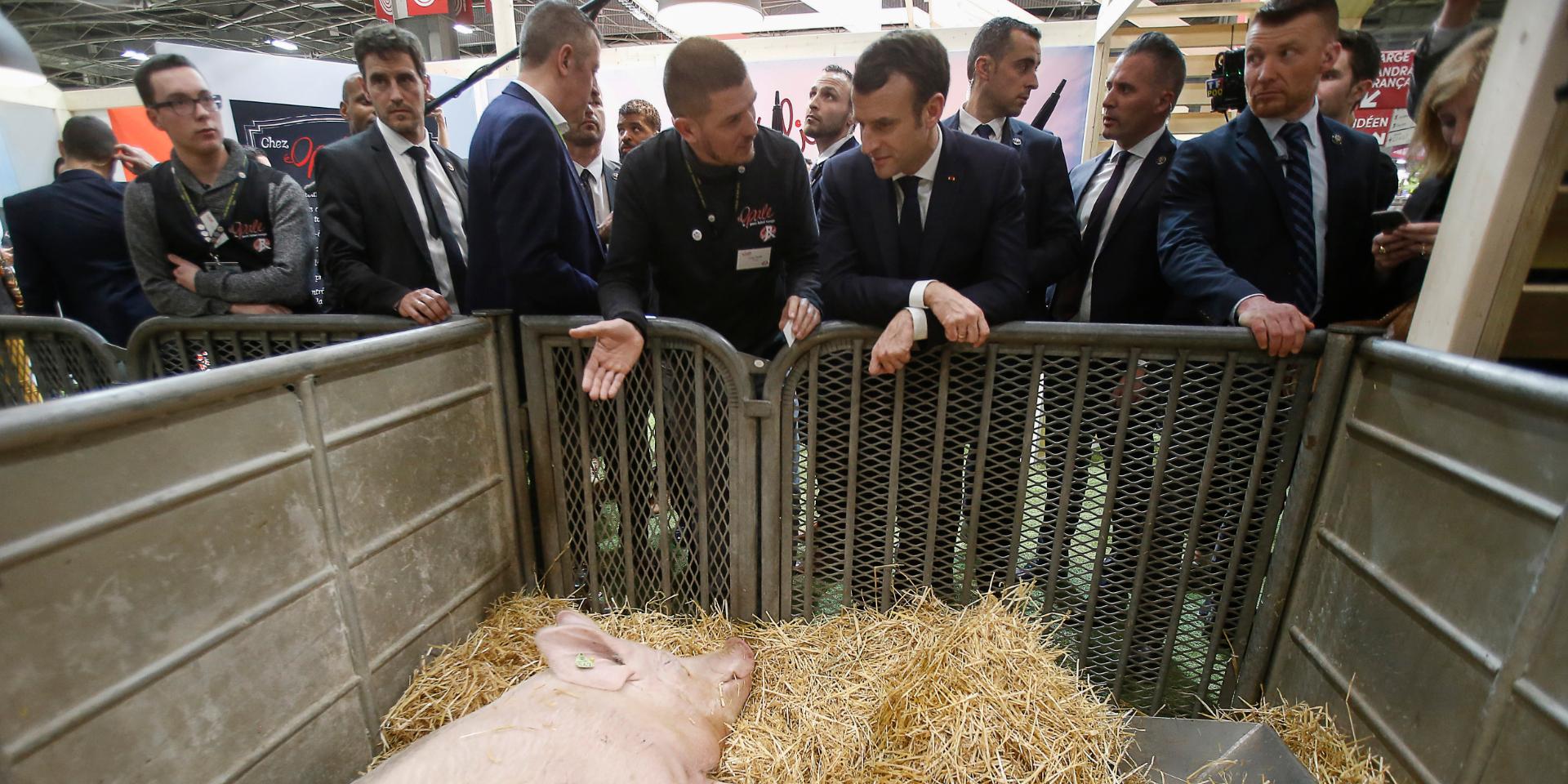 PAC, grogne paysanne et ombre de Chirac : les défis de Macron au Salon de l'Agriculture