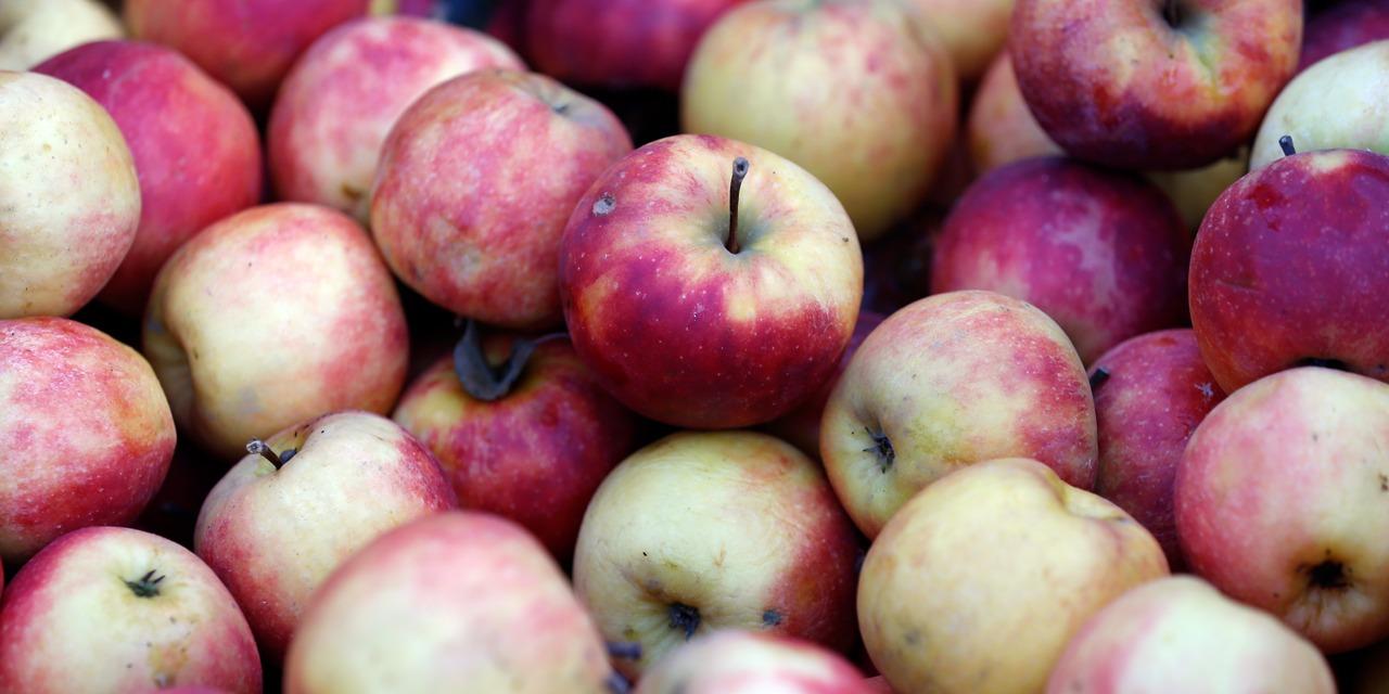 Pourquoi manger des pommes permet de rester en bonne santé ? - Europe 1