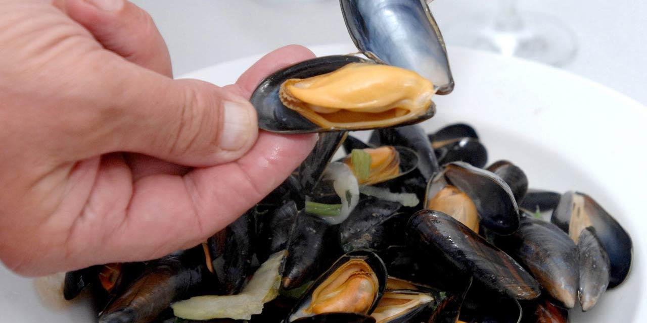 bassin d'arcachon : la pêche et la consommation de moules suspendues
