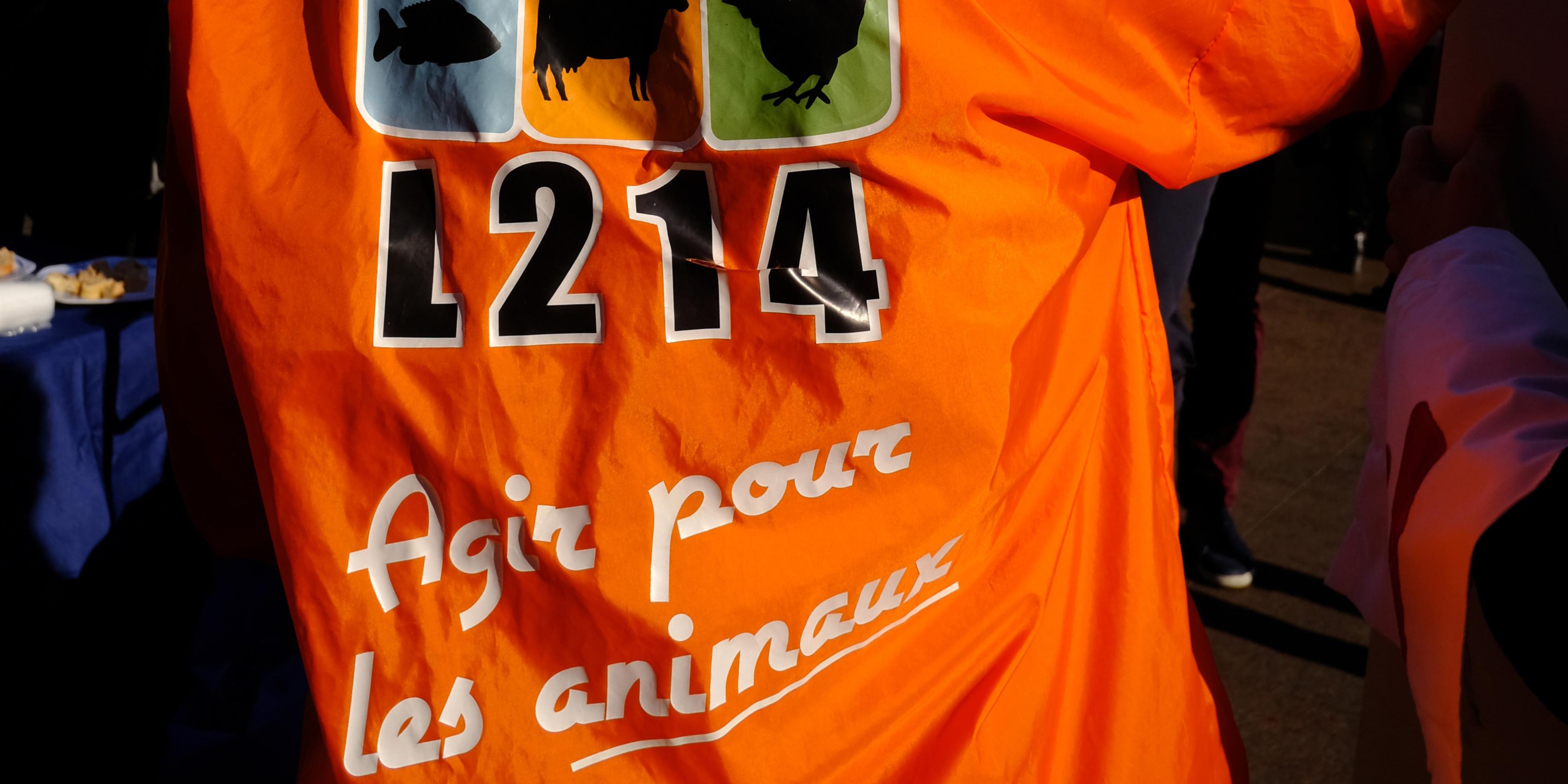 """Côtes d'Armor : images """"insoutenables"""" de cochons en putréfaction dans un élevage"""