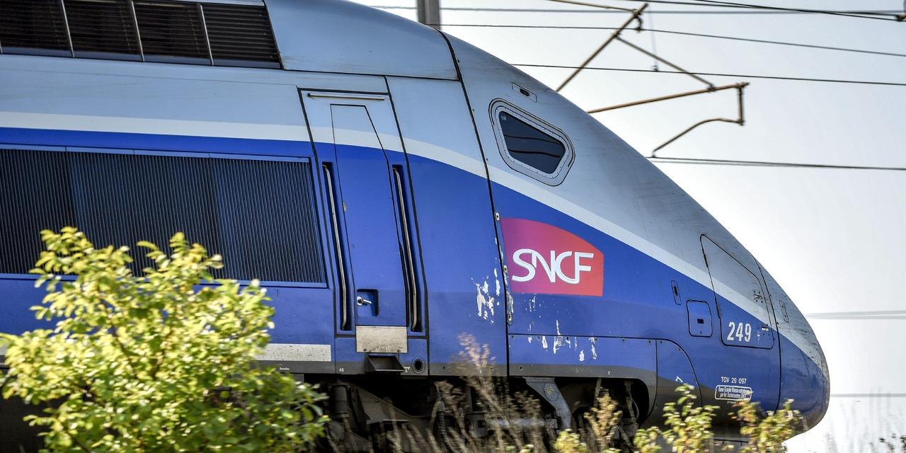 """Le cri d'alerte des colonies de vacances avant l'été : """"La SNCF nous met des bâtons dans les roues"""""""