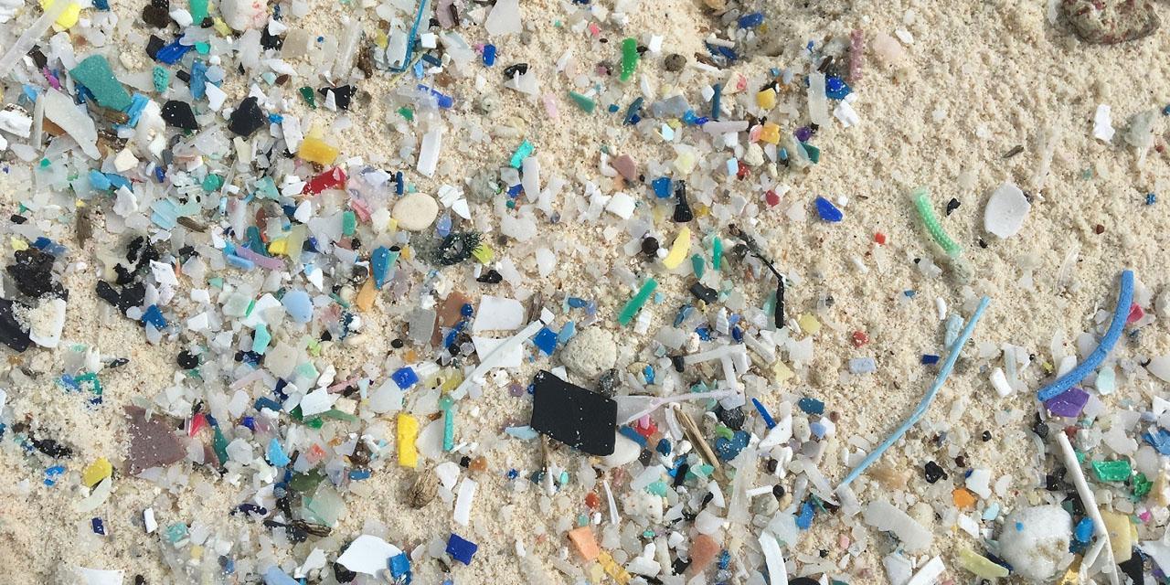"""Cette enzyme """"friande"""" de plastique pourrait permettre de le recycler à l'infini"""